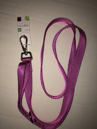 6 ft Dog Leash - Brand New New York, 10040