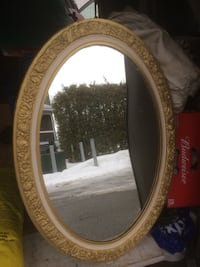 Large oval rosettes mirror- great accent mirror- hard plastic