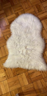 Cute faux fur rug! Dimensions - length: 38in width: 2ft District of Columbia