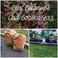 Leaf Cleanup Cherry Hill