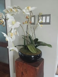 Artificial Orchid