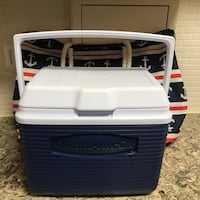 Small cooler with beach tote Arlington, 22204