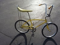 1969 Schwinn Fastback Winneconne, 54986