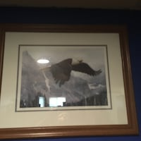 Bald Eagle poster and brown frame