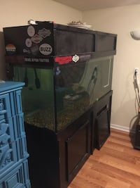 220 gallon fish tank