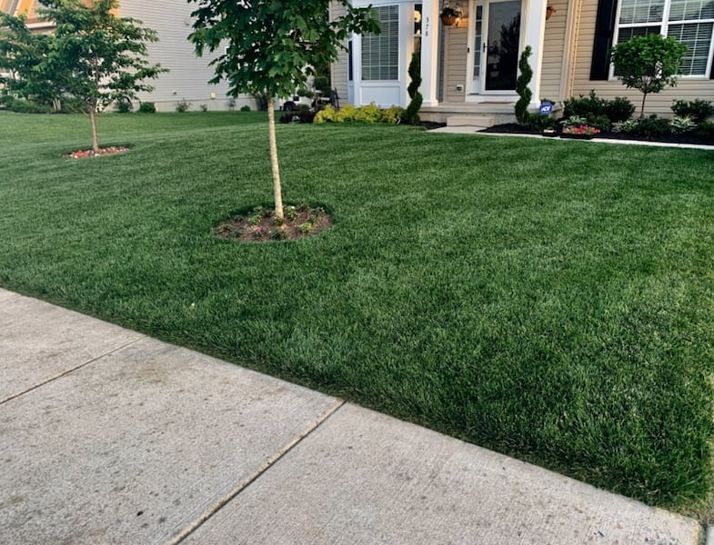 Lawn care/ Landscaping Services ee6cd635-f770-4d18-984c-d7b3f836c7a5