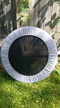 EXERCISE TRAMPOLINE  Guelph, N1H 2C7