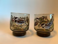 Vintage finch pair of beverage glasses - pick up only in Etobicoke Toronto, M9B 0A1