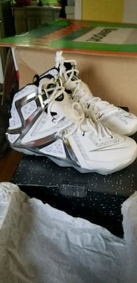 OBO New Lebron 12 Elite Pigalle Edition 8