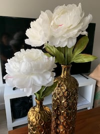 Vases with peonies Washington, 20024