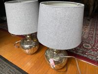 Two Silver & Grey Lamps Alexandria, 22305