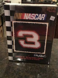 NASCAR-Dale Earnhardt #3 Latch Hook Kit Houston
