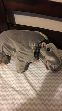 Official NCIS farting hippo