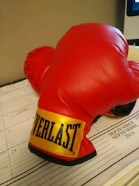 Youth Boxing Gloves Mississauga, L4T 3L6