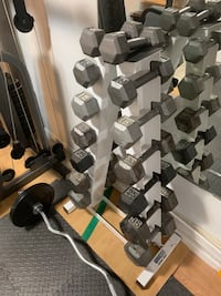 Dumbbells Set with Rack Cortland, 60112