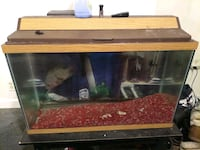 29 gallon fish tank with stand an fish