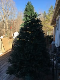 Artificial Christmas tree 8 ft.   Beautiful tree but the lights don't work.   But decorated it looks great.  Very high end tree.  FREE to anyone who needs one.  Deck pickup no delivery.  Comes in three pieces plus the stand   Stony Point, 28678