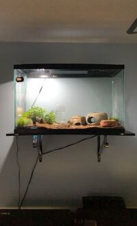 Fish Tank 29gallons + Everything you need!