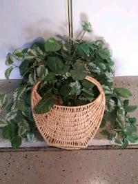 Artificial green plant in polished bamboo baaket Henderson, 89074