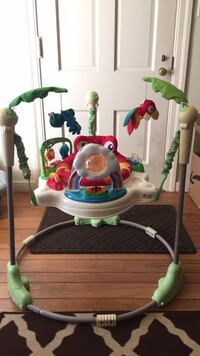 Fisher-Price rainforest jumperoo Sonoma, 95476