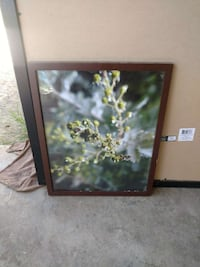 green plant macro shot wall art with brown frame Fresno, 93727