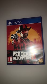 Red dead redemption 2 , 1253