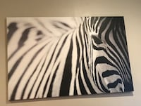 white and black zebra print textile