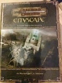 Dungeons and Dragons cityscape Birch River, 26610