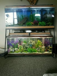 brown wooden framed fish tank Fort Collins
