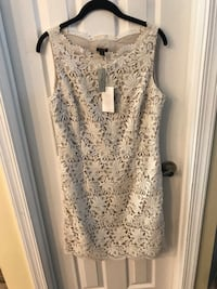 Ann Taylor dress Alexandria, 22315
