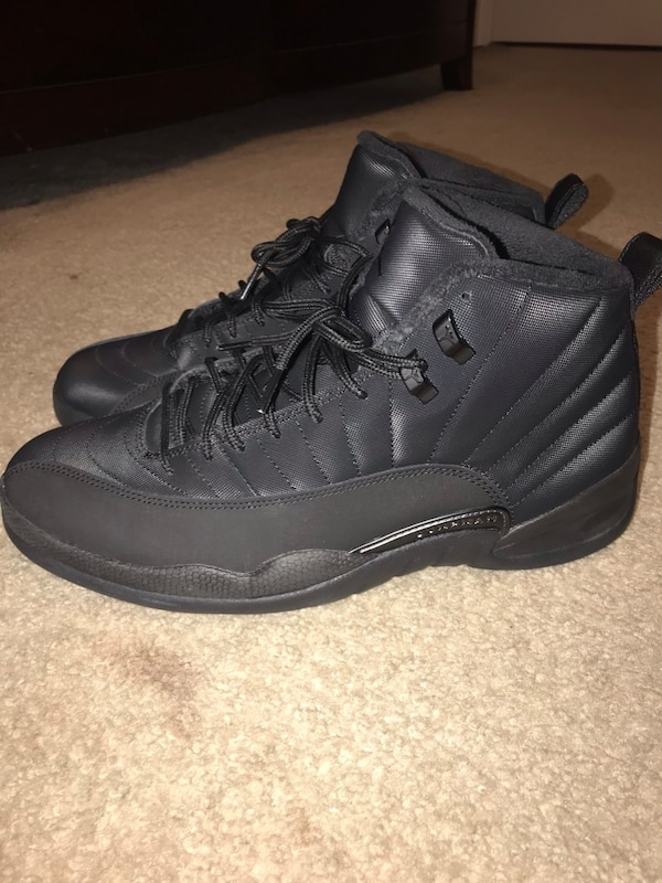 the best attitude 19f7e 708d0 Mens Nike Air Jordan Retro 12 Winterized Size 11.5