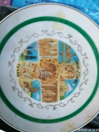 white and green ceramic plate Waxahachie, 75165