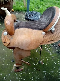 brown and black horse saddle Winters, 95694