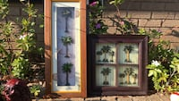 Palms tree picture frame Gulfport, 39507