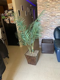 Artificial Palm about 5 ft tall