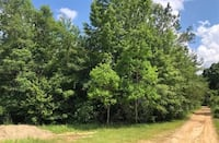 133 acres of land for sale in Pearl River County.