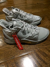 Brand new Nike NASA PG 3 silver