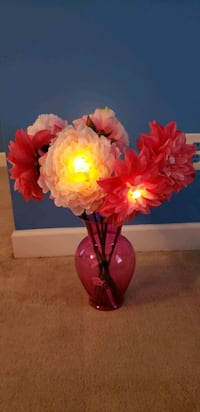 Chargeable light up flowers with free vase Greensboro, 27401