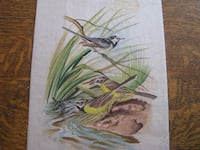 grass and bird painting