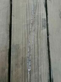 Silver chain Kingston, K7P 2G2