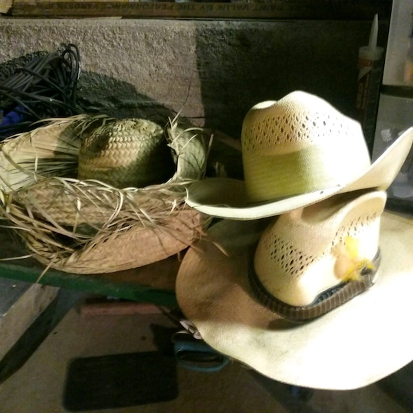 97ee9ff6 Used Stetson hats and two straw hats for sale in Martinsburg - letgo