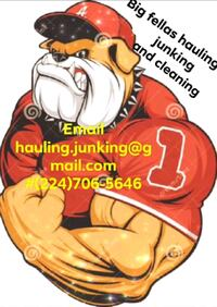 junk removal & cleaning