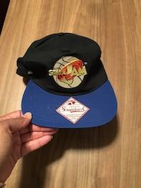 Space Jam SnapBack  Minneapolis, 55409
