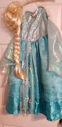 Elsa holoween costume dress, wig and shoes Rockville, 20854