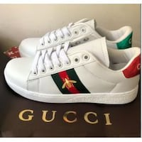 Brand New Guccity Beetle Sneakers null