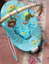 Baby's blue and green bouncer Pitt Meadows, V3Y 1A5