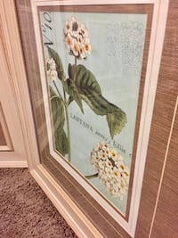 """4 pcs Framed art """" Botanique """" collection 28"""" x 32"""" wood and glass theses were over $150 each ! Price is for all 4 pcs Wylie, 75098"""
