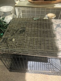 Metal folding dog crate Livermore, 94550