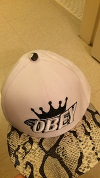 brown, black, and white snakeskin Obey fitted cap