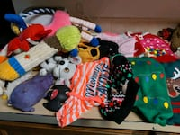 dog lot new sweaters dresses leashes collars toys there is way more Edmonton, T5T 3S7